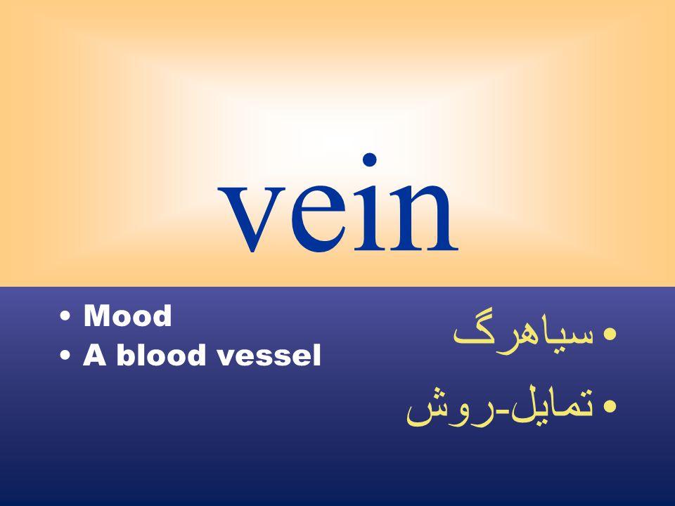 vein Mood A blood vessel سياهرگ تمايل - روش