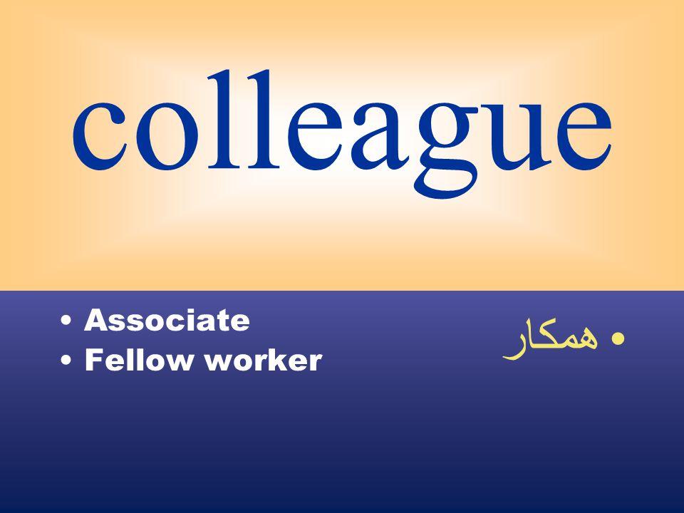 colleague Associate Fellow worker همكار