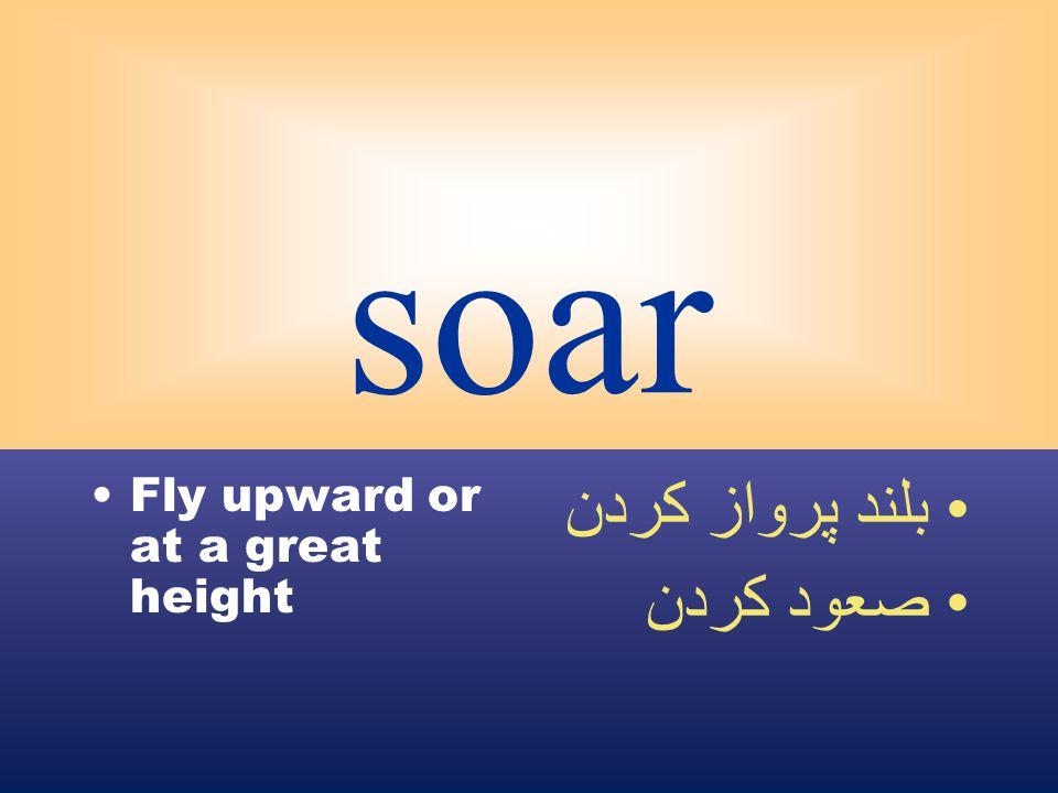 soar Fly upward or at a great height بلند پرواز كردن صعود كردن