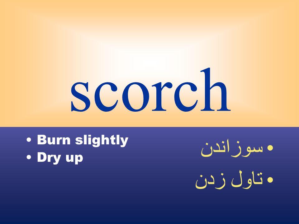scorch Burn slightly Dry up سوزاندن تاول زدن