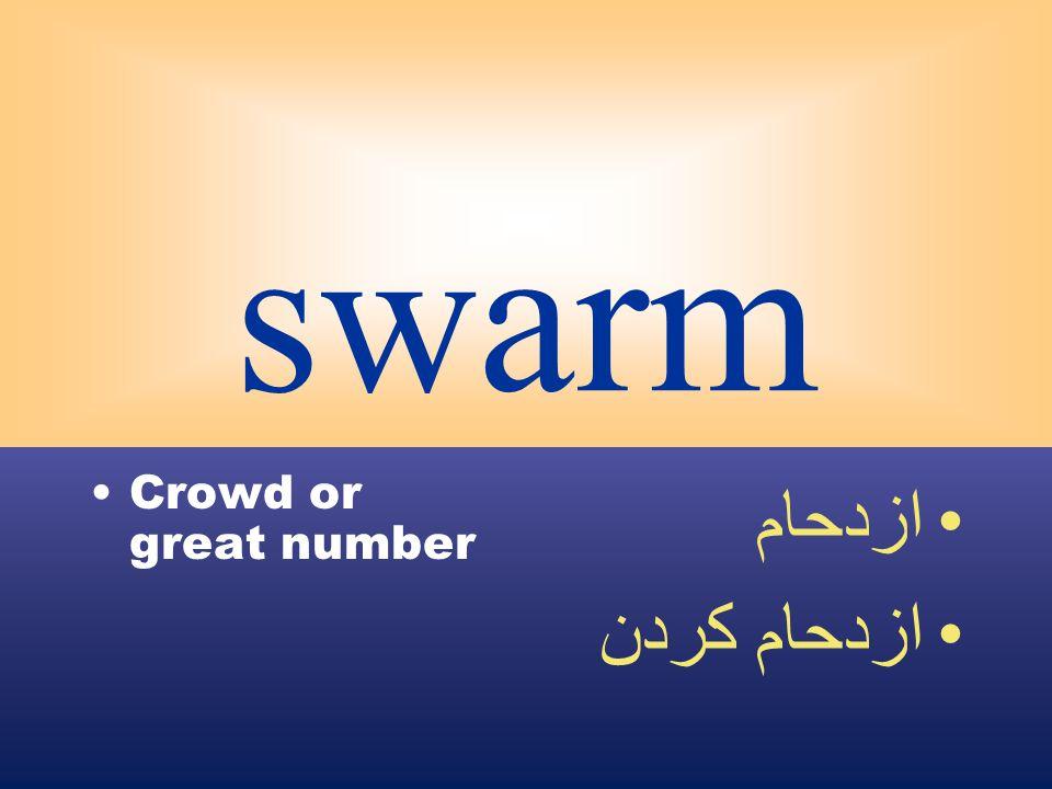 swarm Crowd or great number ازدحام ازدحام كردن