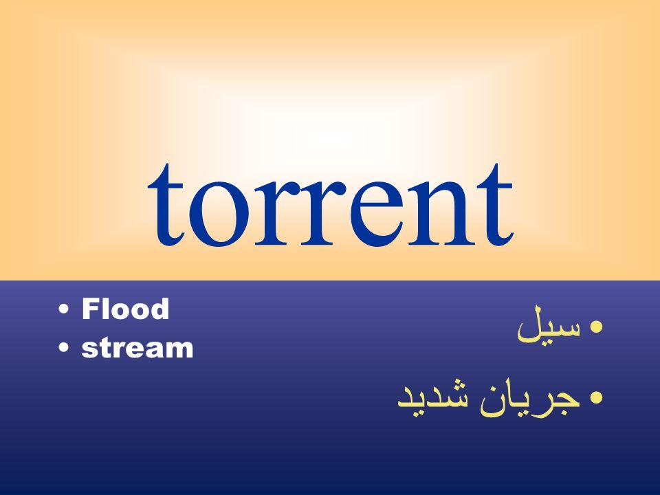 torrent Flood stream سيل جريان شديد