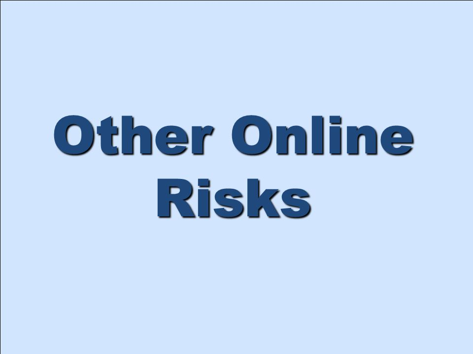 Other Online Risks