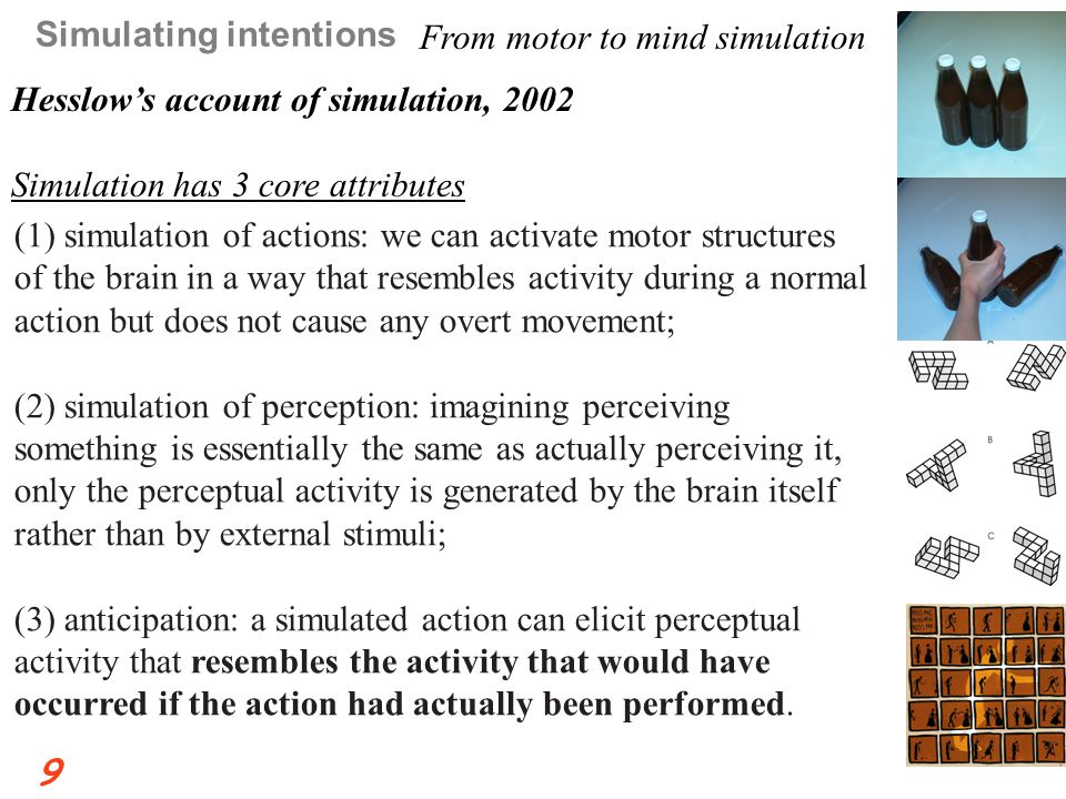 (1) simulation of actions: we can activate motor structures of the brain in a way that resembles activity during a normal action but does not cause any overt movement; (2) simulation of perception: imagining perceiving something is essentially the same as actually perceiving it, only the perceptual activity is generated by the brain itself rather than by external stimuli; (3) anticipation: a simulated action can elicit perceptual activity that resembles the activity that would have occurred if the action had actually been performed.
