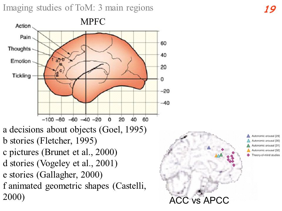 a decisions about objects (Goel, 1995) b stories (Fletcher, 1995) c pictures (Brunet et al., 2000) d stories (Vogeley et al., 2001) e stories (Gallagher, 2000) f animated geometric shapes (Castelli, 2000) Imaging studies of ToM: 3 main regions 19 MPFC ACC vs APCC