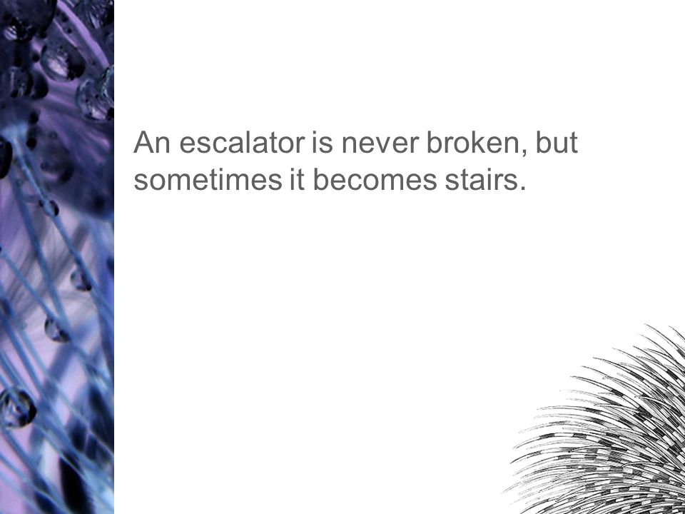 An escalator is never broken, but sometimes it becomes stairs.