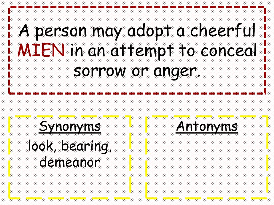 A person may adopt a cheerful MIEN in an attempt to conceal sorrow or anger.