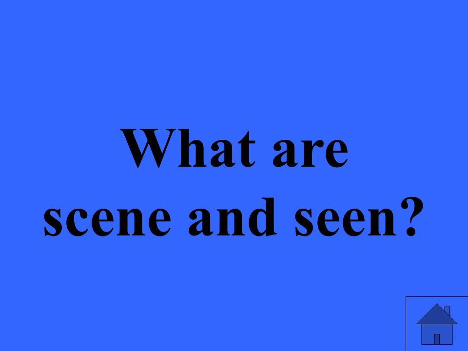 What are scene and seen?