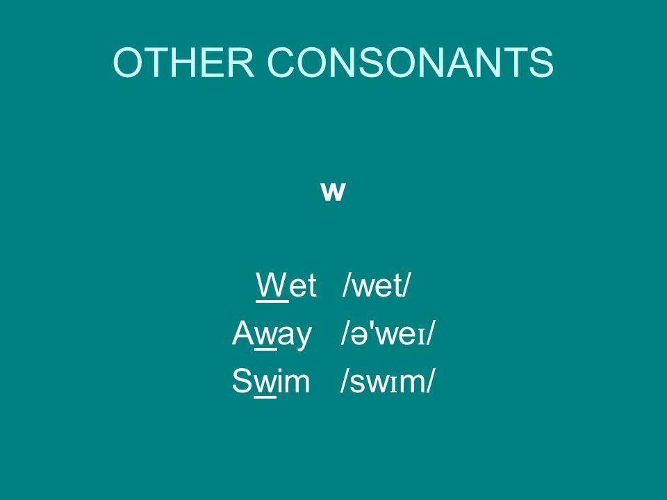 OTHER CONSONANTS w Wet /wet/ Away /ə we ɪ / Swim /sw ɪ m/