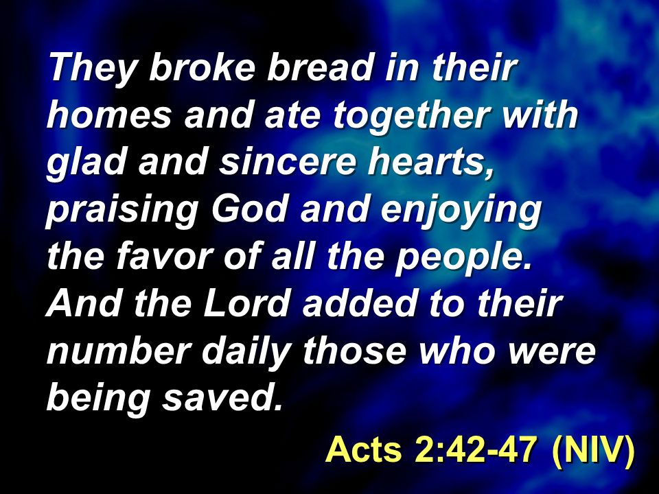 Reading: Luke 6:27-36 by Amy Burns