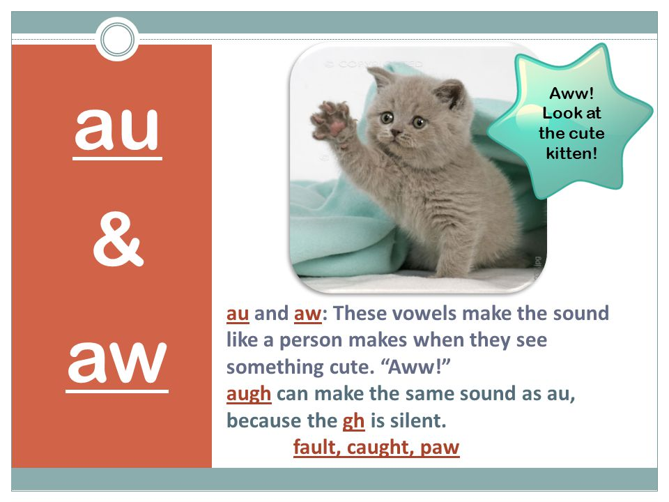 "au and aw: These vowels make the sound like a person makes when they see something cute. ""Aww!"" augh can make the same sound as au, because the gh is"