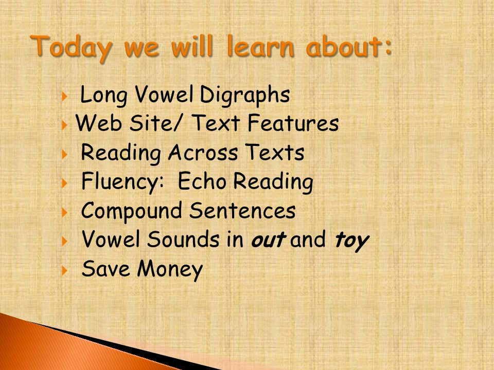  Long Vowel Digraphs  Web Site/ Text Features  Reading Across Texts  Fluency: Echo Reading  Compound Sentences  Vowel Sounds in out and toy  Save Money