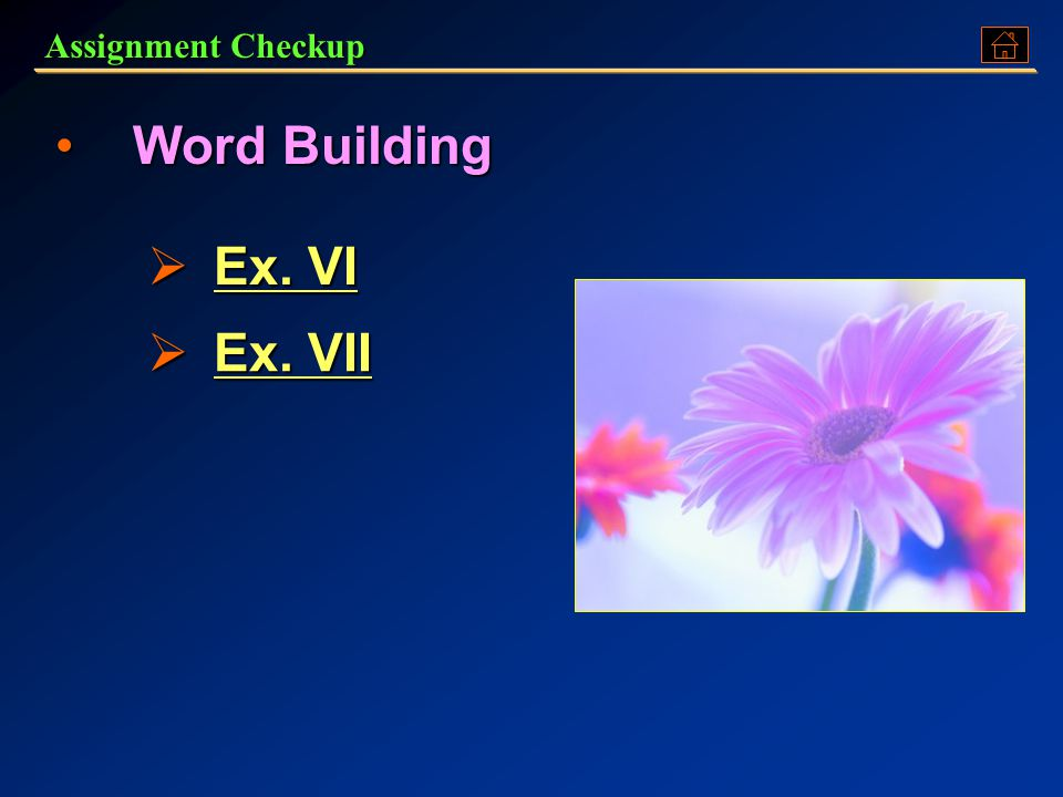Assignment Checkup Word BuildingWord Building  Ex. VI Ex. VI Ex. VI  Ex. VII Ex. VII Ex. VII
