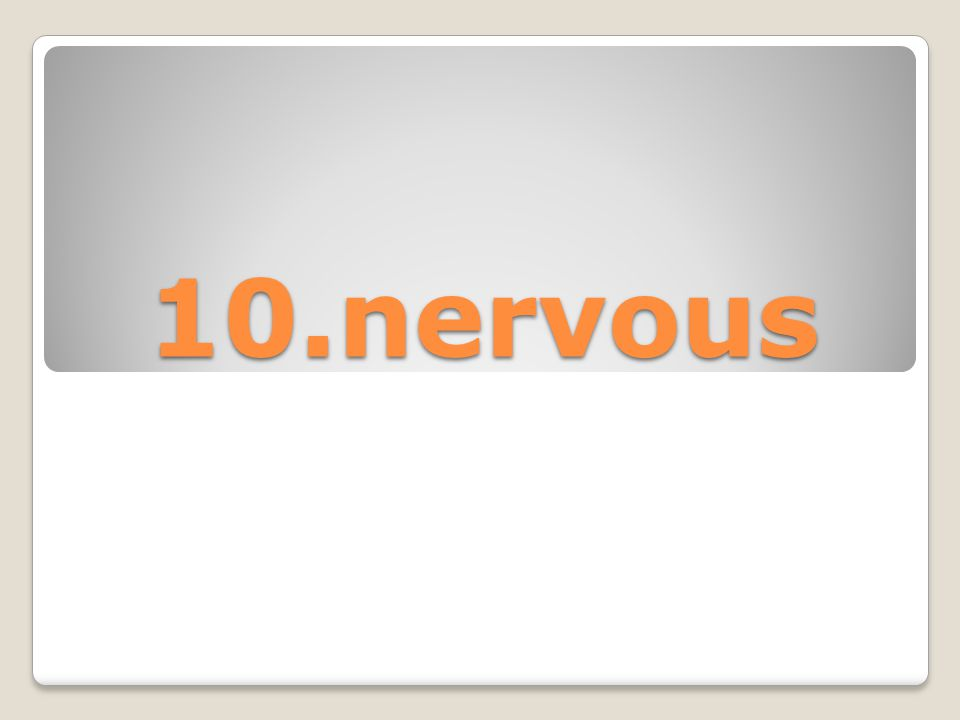 10.nervous