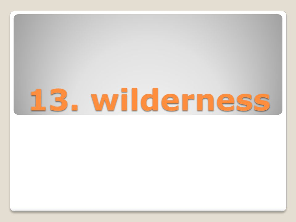 13. wilderness