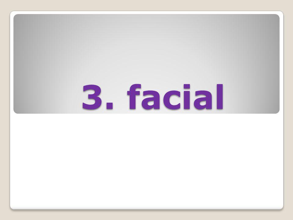 3. facial 3. facial