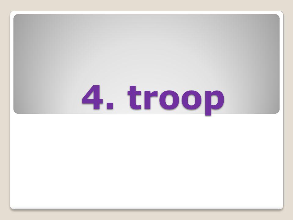 4. troop 4. troop