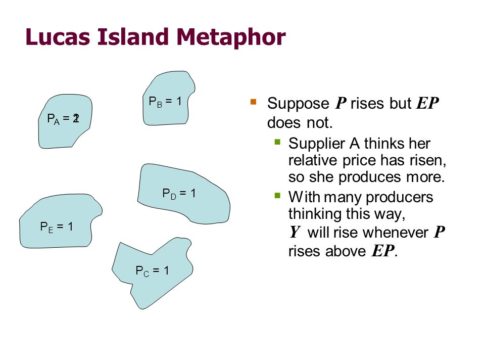 Lucas Island Metaphor  Suppose P rises but EP does not.  Supplier A thinks her relative price has risen, so she produces more.  With many producers