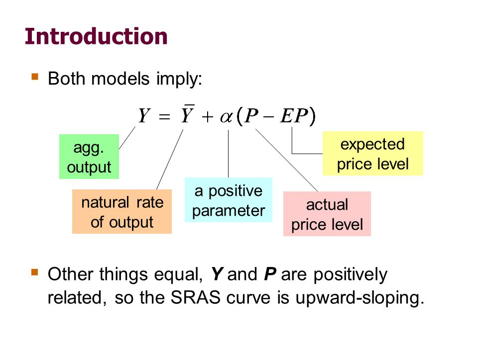 Introduction  Both models imply: natural rate of output a positive parameter expected price level actual price level agg. output  Other things equal