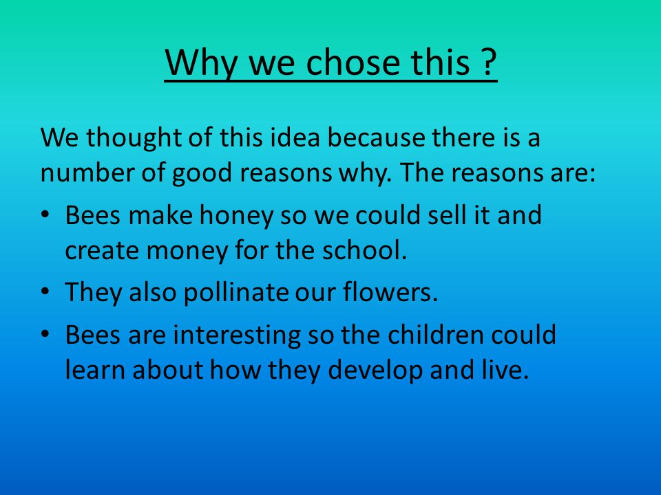Why we chose this . We thought of this idea because there is a number of good reasons why.