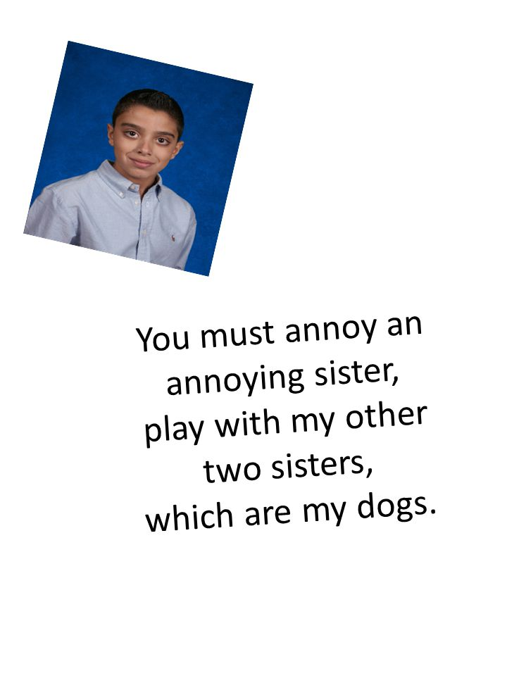 You must annoy an annoying sister, play with my other two sisters, which are my dogs.