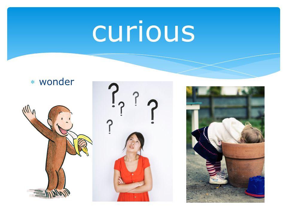 wonder curious