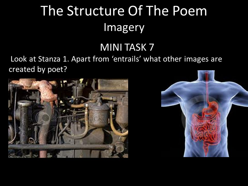 The Structure Of The Poem Imagery MINI TASK 7 Look at Stanza 1.
