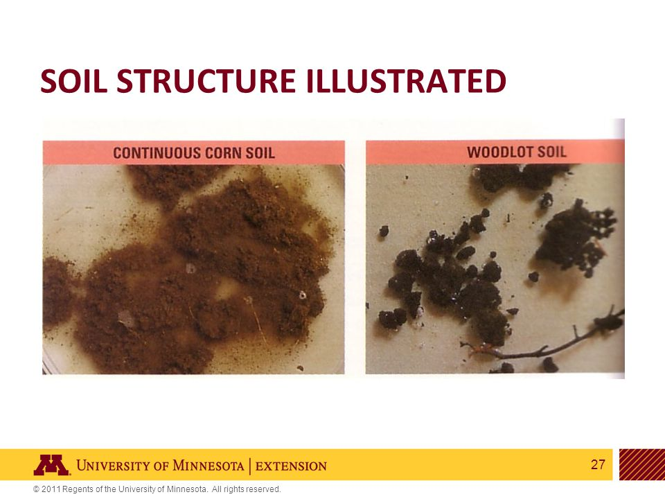 27 © 2011 Regents of the University of Minnesota. All rights reserved. SOIL STRUCTURE ILLUSTRATED