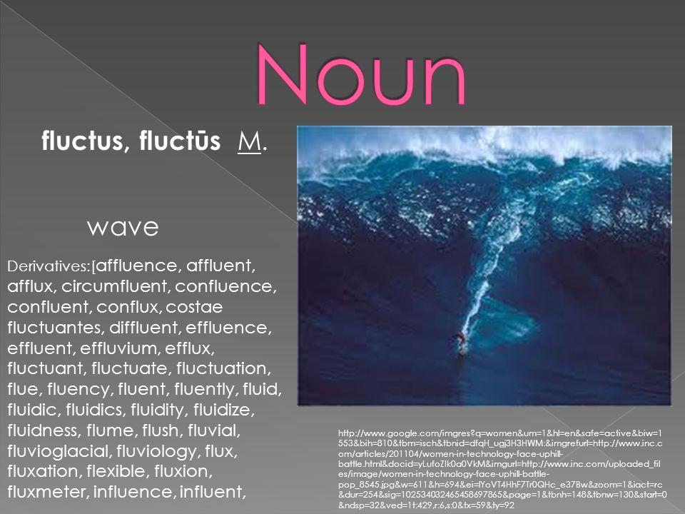 fluctus, fluctūs M. wave Derivatives:[ affluence, affluent, afflux, circumfluent, confluence, confluent, conflux, costae fluctuantes, diffluent, efflu