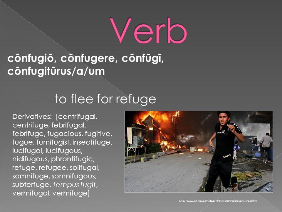 cōnfugiō, cōnfugere, cōnfūgī, cōnfugitūrus/a/um http://www.nytimes.com/2008/10/11/world/middleeast/11iraq.html to flee for refuge Derivatives: [centrifugal, centrifuge, febrifugal, febrifuge, fugacious, fugitive, fugue, fumifugist, insectifuge, lucifugal, lucifugous, nidifugous, phrontifugic, refuge, refugee, solifugal, somnifuge, somnifugous, subterfuge, tempus fugit, vermifugal, vermifuge]