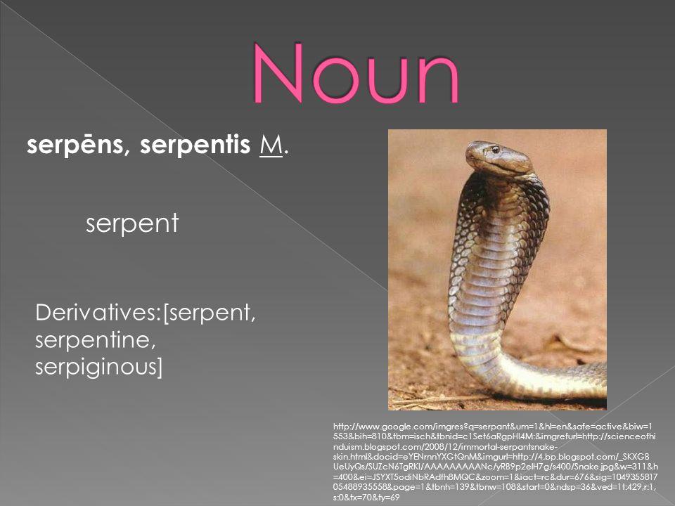serpēns, serpentis M. serpent Derivatives:[serpent, serpentine, serpiginous] http://www.google.com/imgres?q=serpant&um=1&hl=en&safe=active&biw=1 553&b