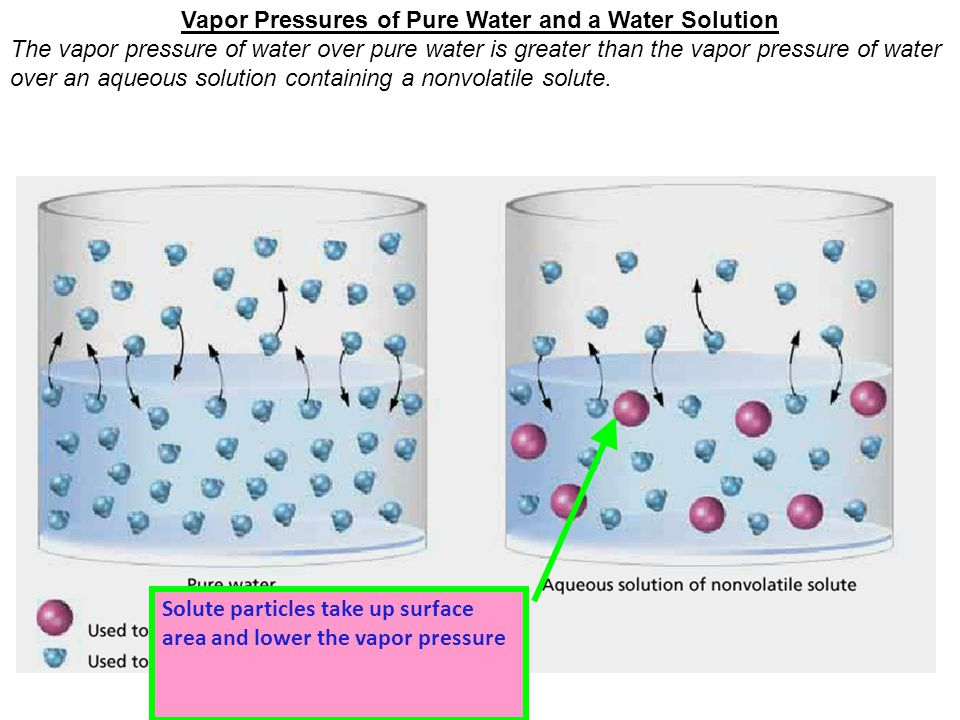 Vapor Pressures of Pure Water and a Water Solution The vapor pressure of water over pure water is greater than the vapor pressure of water over an aqueous solution containing a nonvolatile solute.
