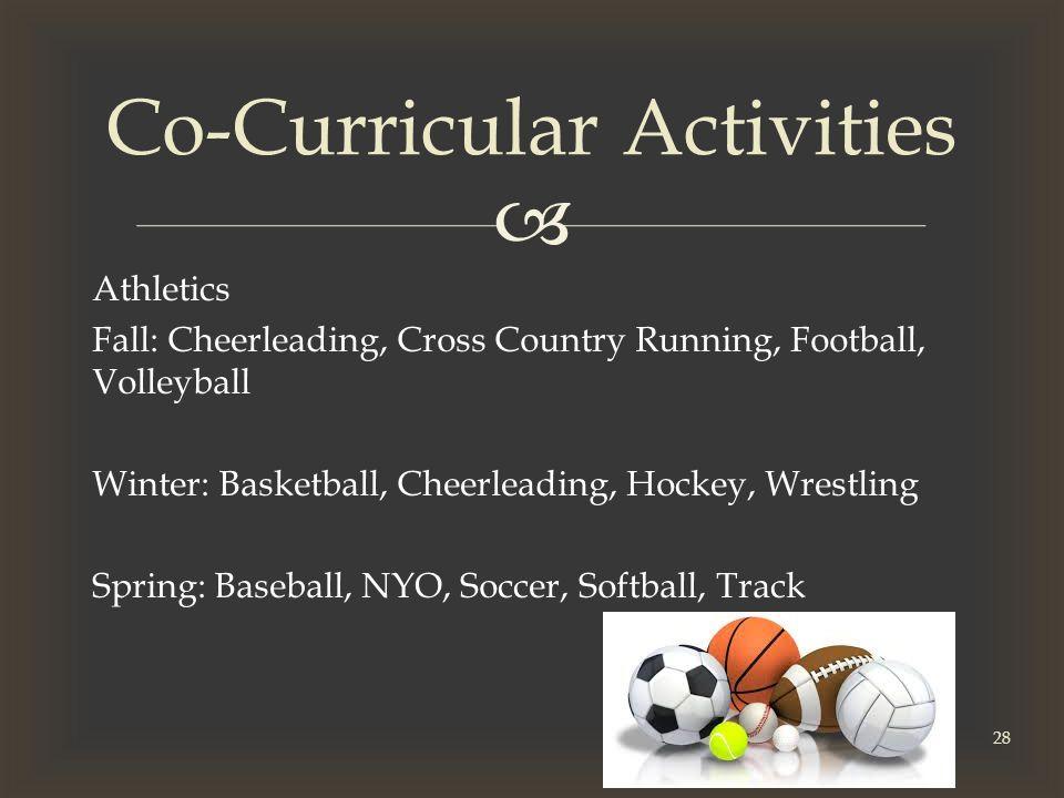  Athletics Fall: Cheerleading, Cross Country Running, Football, Volleyball Winter: Basketball, Cheerleading, Hockey, Wrestling Spring: Baseball, NYO, Soccer, Softball, Track Co-Curricular Activities 28
