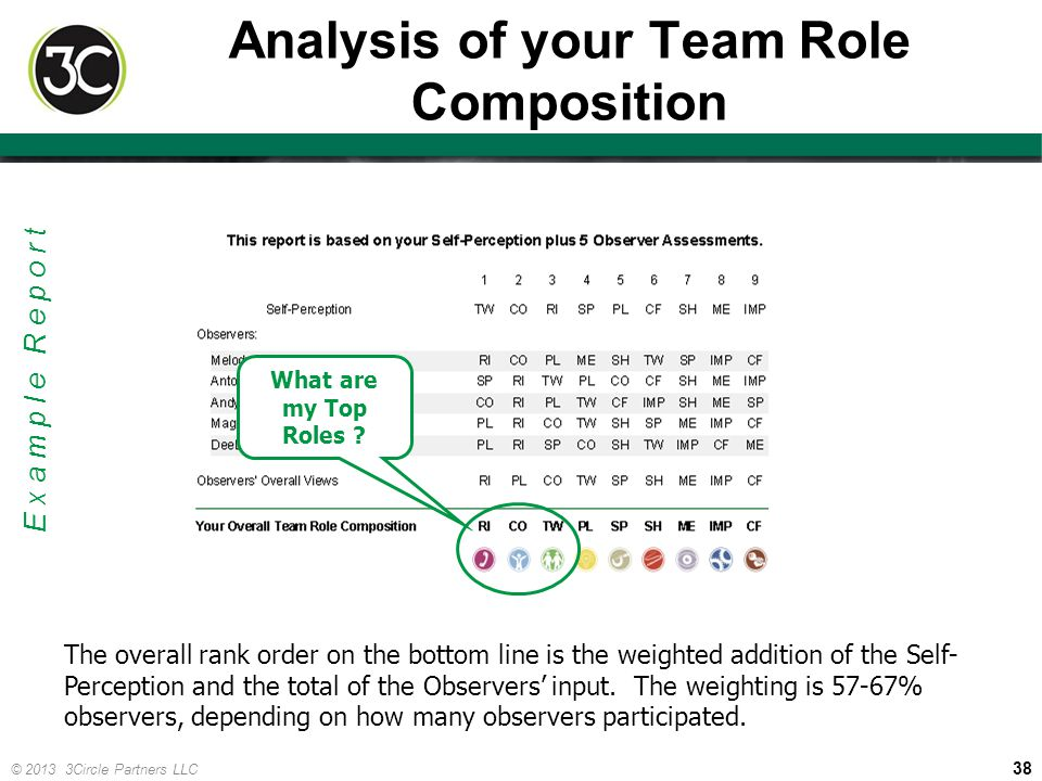 38 © 2013 3Circle Partners LLC Analysis of your Team Role Composition The overall rank order on the bottom line is the weighted addition of the Self-