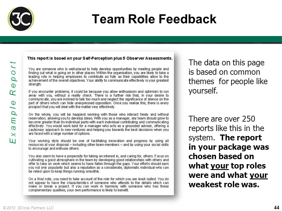 44 © 2013 3Circle Partners LLC Team Role Feedback Example Report The data on this page is based on common themes for people like yourself. There are o