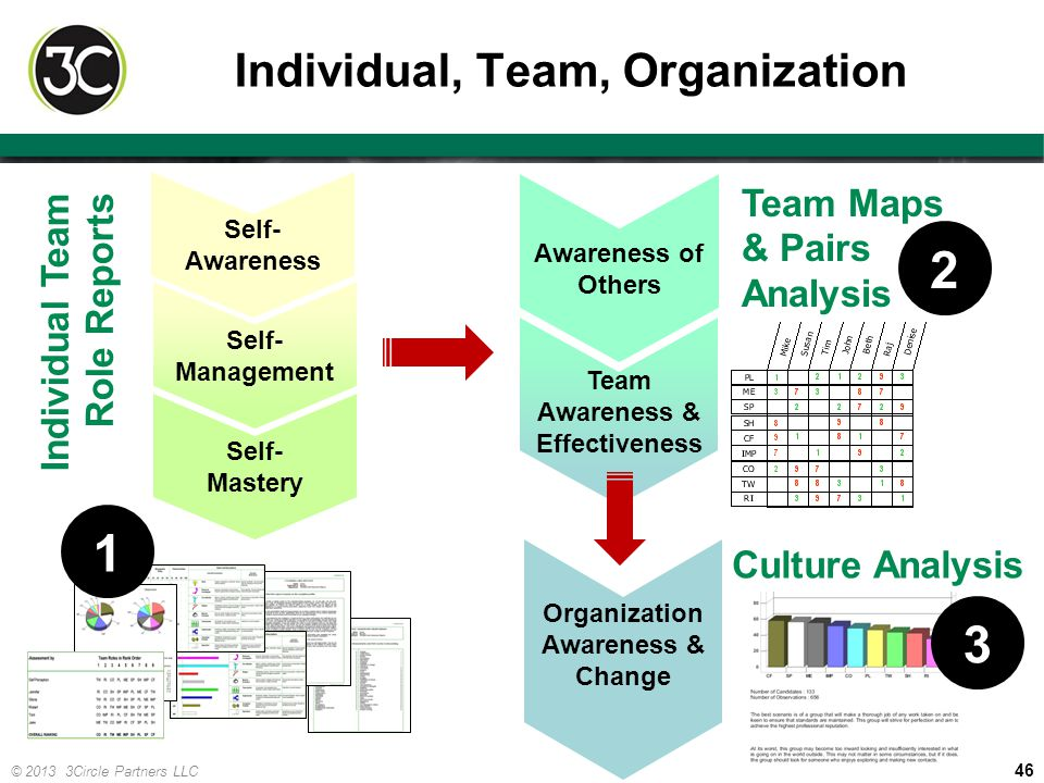 46 © 2013 3Circle Partners LLC Individual, Team, Organization Individual Team Role Reports Culture Analysis Team Maps & Pairs Analysis Self- Mastery S