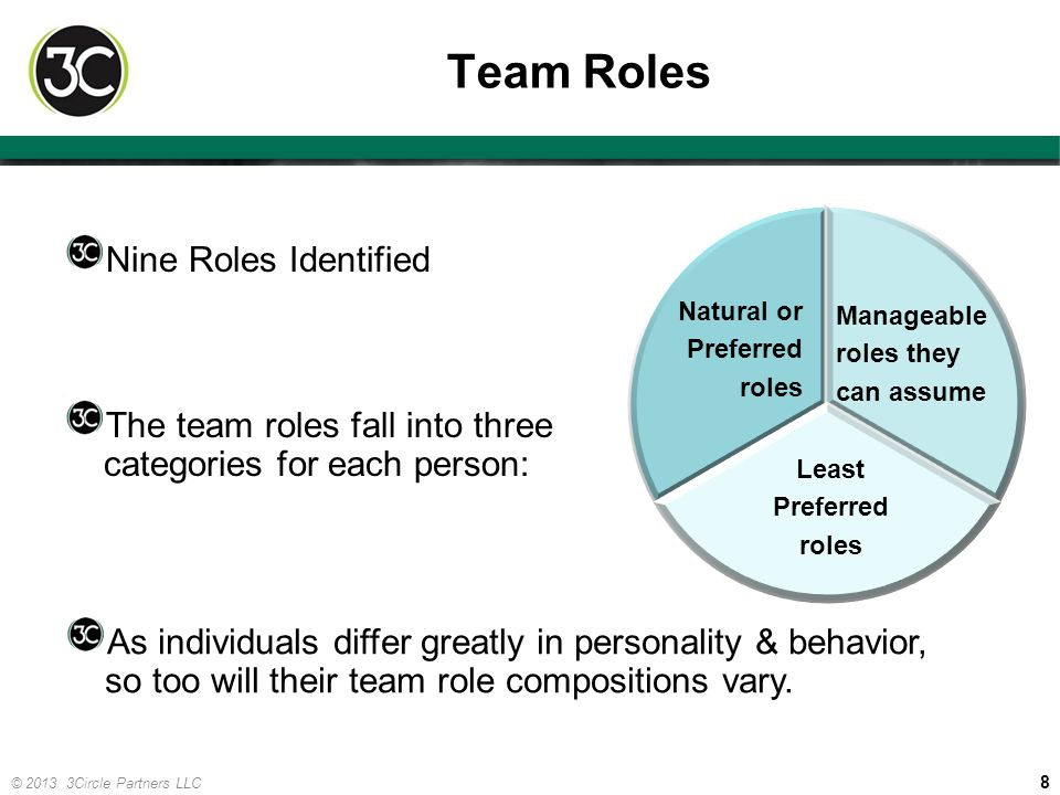 8 © 2013 3Circle Partners LLC Team Roles Nine Roles Identified The team roles fall into three categories for each person: Natural or Preferred roles A