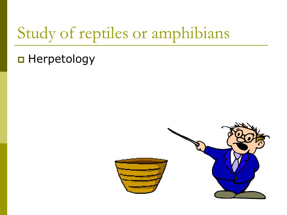 Study of reptiles or amphibians  Herpetology
