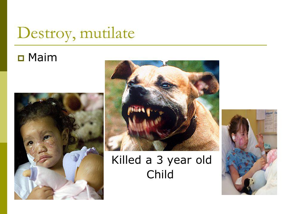 Destroy, mutilate  Maim Killed a 3 year old Child