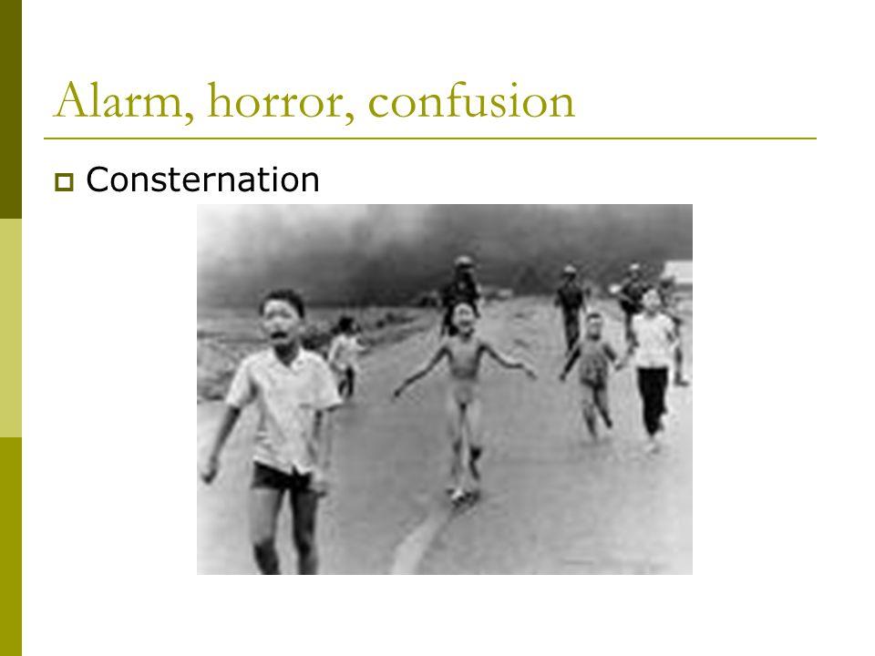 Alarm, horror, confusion  Consternation