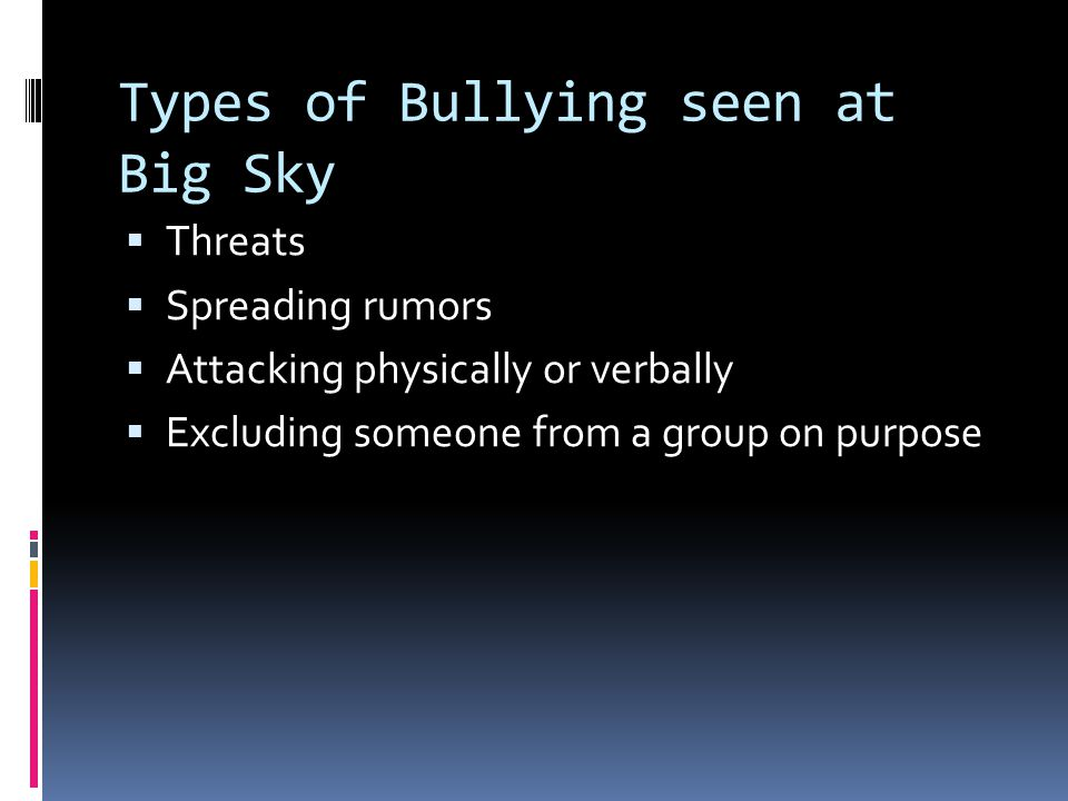 Types of Bullying seen at Big Sky  Threats  Spreading rumors  Attacking physically or verbally  Excluding someone from a group on purpose