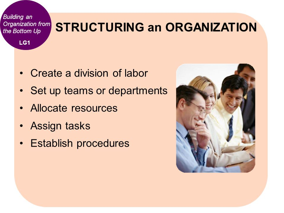 Building an Organization from the Bottom Up Create a division of labor Set up teams or departments Allocate resources Assign tasks Establish procedure