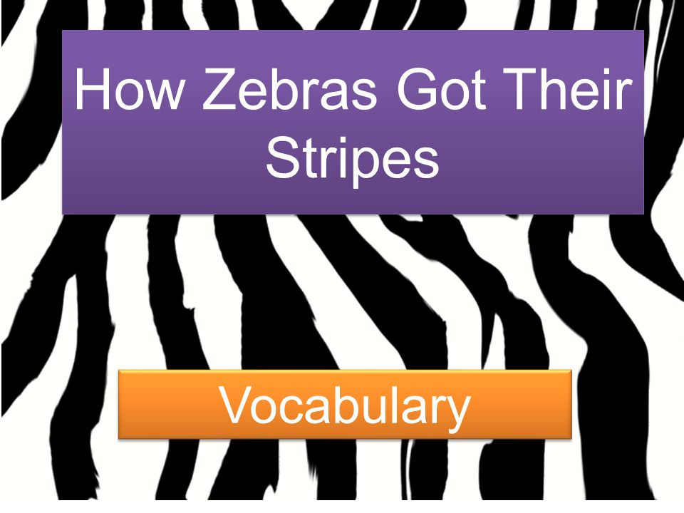 How Zebras Got Their Stripes Vocabulary