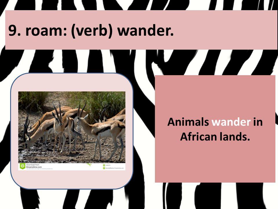 9. roam: (verb) wander. Animals wander in African lands.