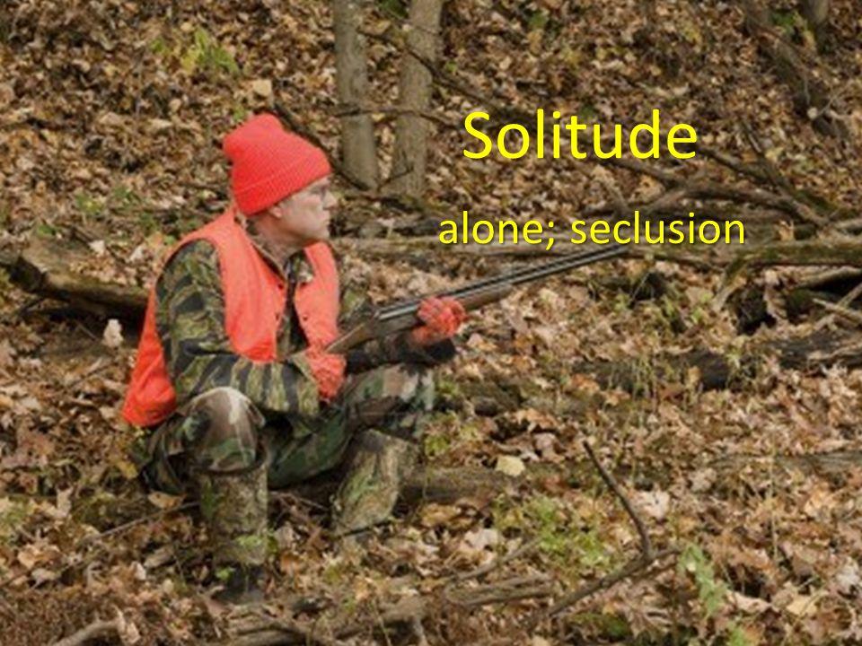 Solitude alone; seclusion