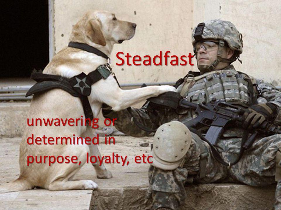 Steadfast unwavering or determined in purpose, loyalty, etc