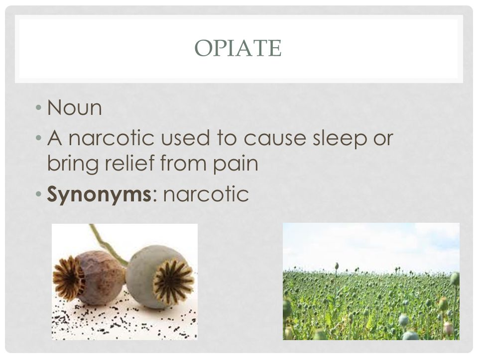 OPIATE Noun A narcotic used to cause sleep or bring relief from pain Synonyms : narcotic