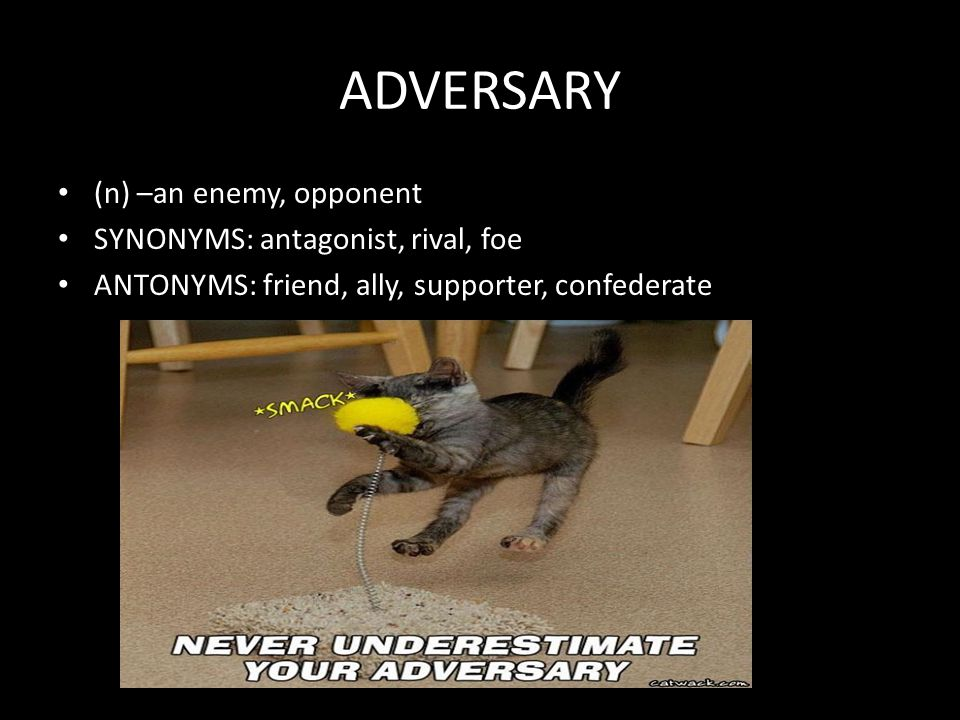 ADVERSARY (n) –an enemy, opponent SYNONYMS: antagonist, rival, foe ANTONYMS: friend, ally, supporter, confederate
