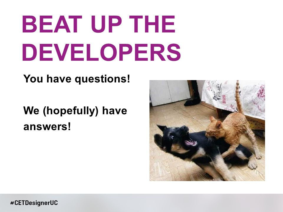 You have questions! We (hopefully) have answers! BEAT UP THE DEVELOPERS