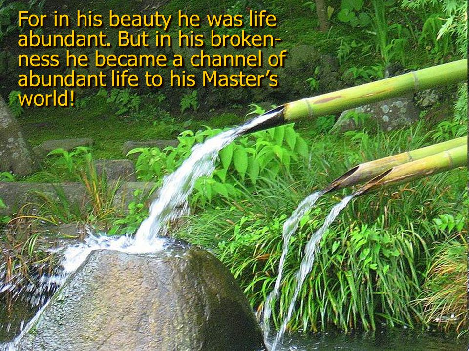 In that day was Bamboo —once so glorious in his stately beauty— yet more glorious in his brokenness and humility.